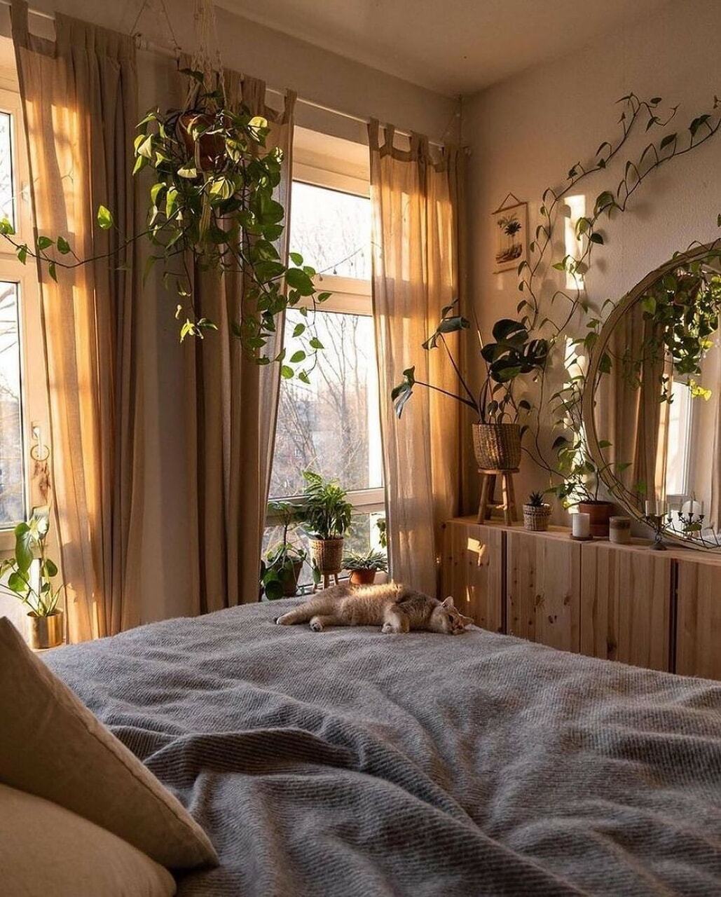 bedroom, cat, and home image
