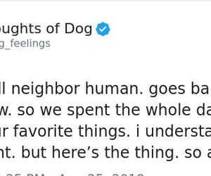 matt nelson, thoughts of a dog, and education is important image