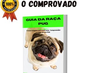 cachorro, pet, and pug image