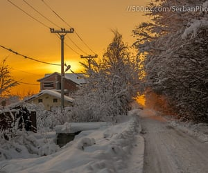 golden, road, and winter image