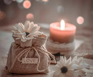 calm, white flowers, and candle image