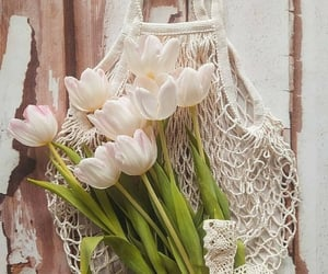 flores, inspiracion, and retro image