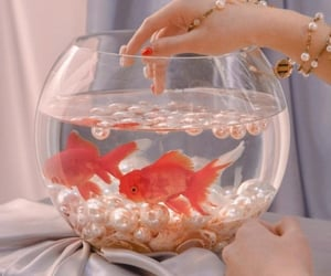 fish, aesthetic, and pearls image