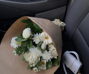 Photo shared by Mobina on April 09, 2021 tagging @mobinapeiman, and @jacquemus. May be an image of flower.
