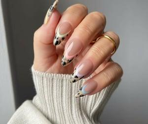animal print, fashion, and nails image