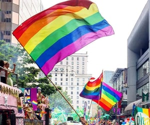 lgbt, love, and flag image