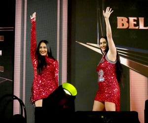 wwe, bella twins, and brie bella image