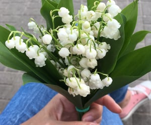 bouquet, lilies of the valley, and flowers image