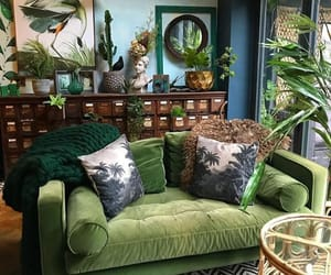 green, living room, and plants image