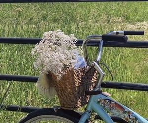 basket, bicycle, and blue image