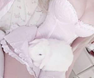 bunny, body aesthetic, and aesthetic image