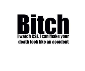 bitch, csi, and funny image