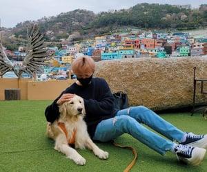 Seventeen, boo seungkwan, and svt image