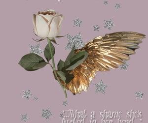 pink, Lyrics, and stars image