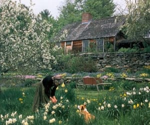 aesthetic, anne of green gables, and anne shirley image