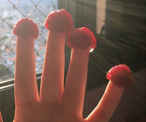 fingers, raspberry, and sunlight image