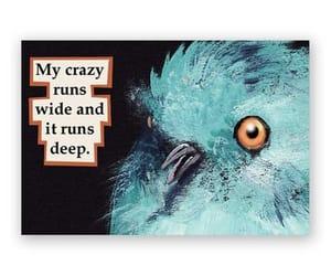 art, bird, and crazy image