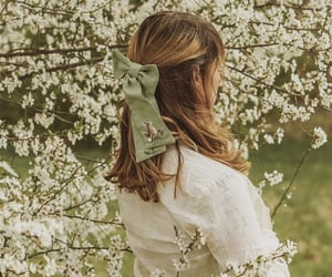 blossoms, spring, and cottage fashion image