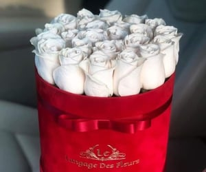 beautiful, celebrate, and flower image