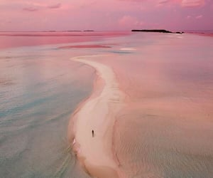 sea, pink, and sunset image