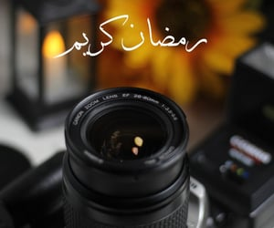 photography, algerie, and dzair image