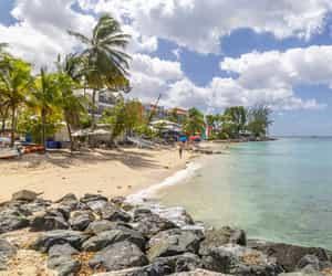 beach, city, and barbados image