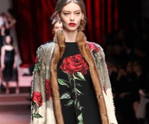 chic, Dolce & Gabbana, and fashion image