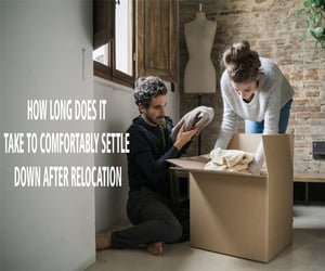movers, packers and movers, and relocation image