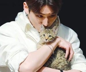 idol, kiki, and kpop image