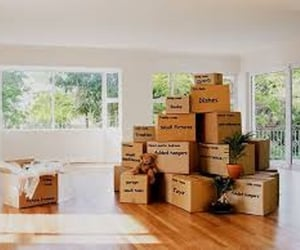 best moving company image