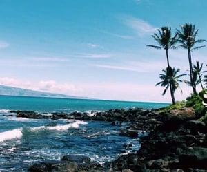 summer, beach, and hawaii image