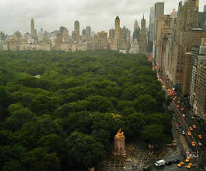Central Park, city, and new york image