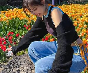kpop, tiny, and jennie image