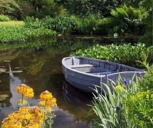 boats and nature image