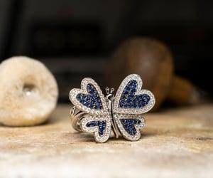 mariposa, moda, and zafiro image