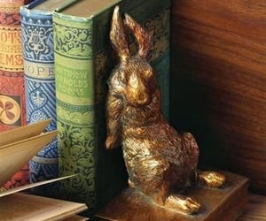 bookends, books, and rabbit image