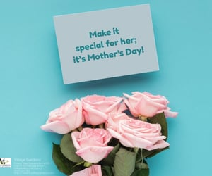 mother's day flowers, florist, and independence image