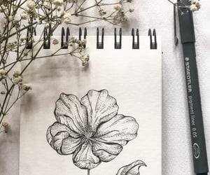 aesthetic, botanical, and sketchbook image