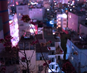 flowers, city, and light image