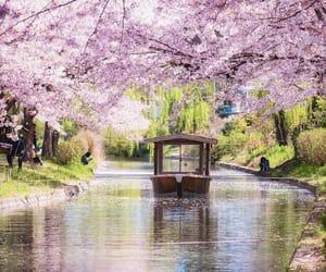 japan, pastel, and spring image