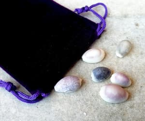 witchcraft, natural shells, and voodoo supplies image
