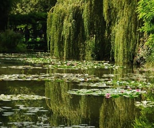 artsy, calm, and claude monet image