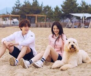 Korean Drama, jdrama, and dramas image