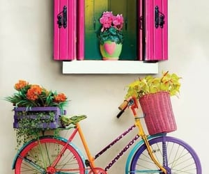 flowers, bicycle, and house image