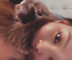 animal, jennie kim, and jennie gifs image