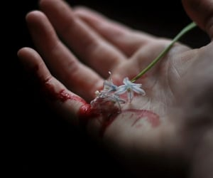flowers, hand, and blood image