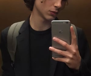 aesthetic, heart throb, and timothee chalamet image