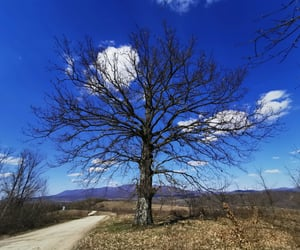 air, blue, and nature image