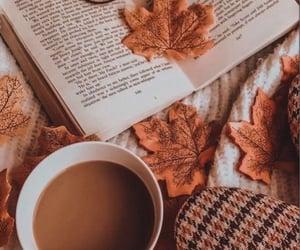 book, fall, and tea image