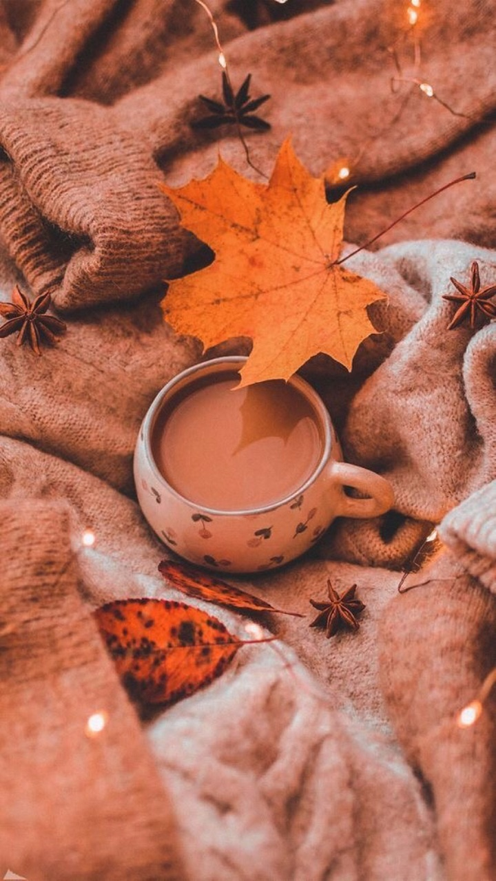 autumn, coffee, and 🍂 image